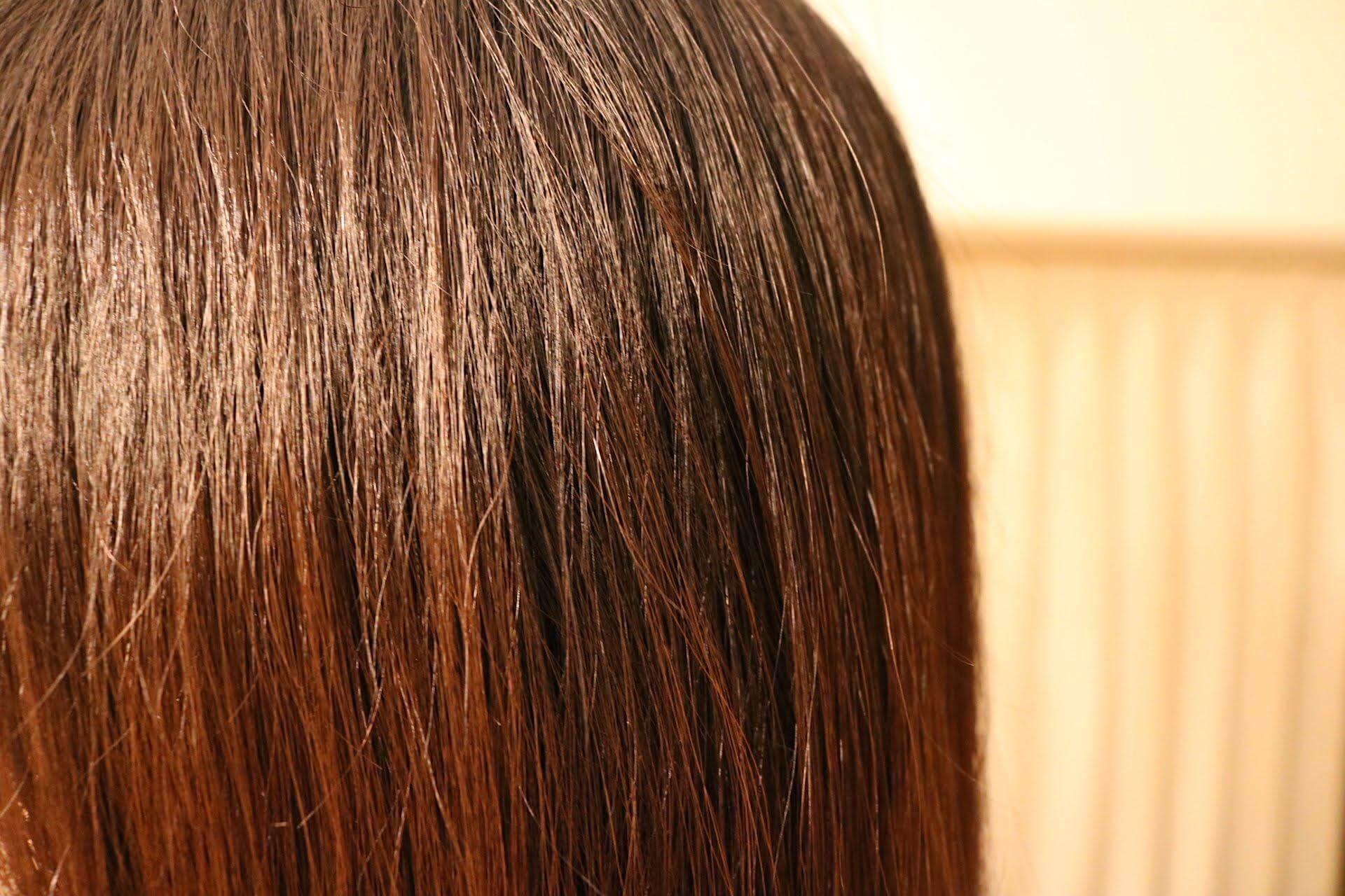 美巣シャンプー後の髪