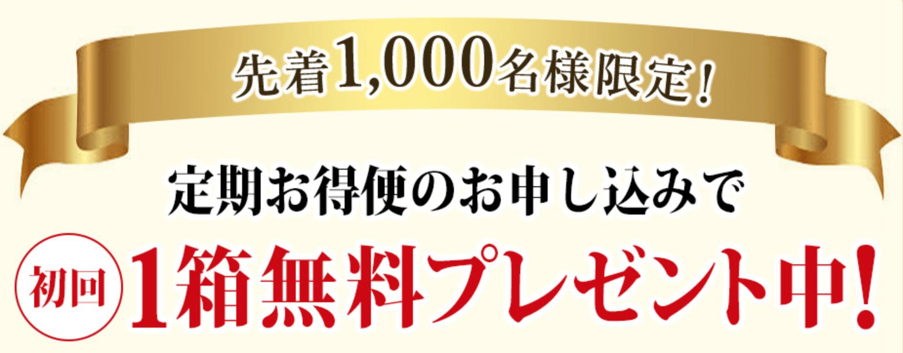 ツバメモリ15000の初回限定キャンペーン